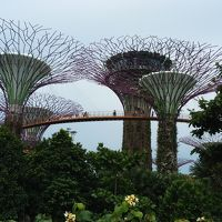 女1人旅!シンガポール�初のアジア到着