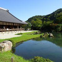 2017年9月 京都観光(鴨川川床ランチ〜嵐山観光スポット巡り)