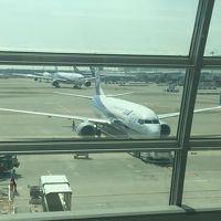 Flight NH575