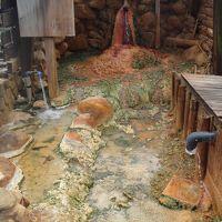 宝塚 宝の湯・・・久しぶりに、アカスリをしてきました。