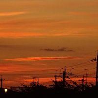 早朝散歩 伊丹市鴻池第一公園横で日の出の撮影 上巻。