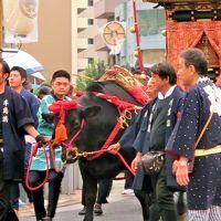 <御鎮座1160年記念>5年に1度だけの牛嶋神社大祭(・ω・)/♪