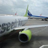 帰りの飛行機もソラシドエアーのボーイング737-800でした。快適な飛行でした。