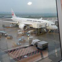 灼熱の大地カンボジアへ・その2/乗り換えのためホーチミンのタンソンニャット空港を5時間強もぶらぶら