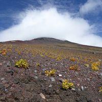 目指せ!為せば成る・・・富士山登頂!