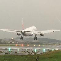 台湾(15)結局ここでも熱視線/松山空港