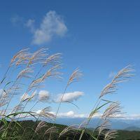 台風一過の茶臼山高原ドライブ