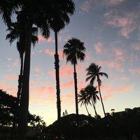 今年もハワイに来ることができました。(後半)