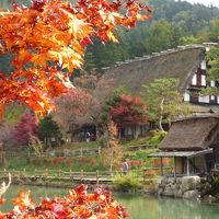 岐阜へ行った。紅葉の飛騨高山・白川郷