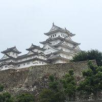 ぺーりん姫路城に行く