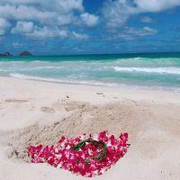 """32-3★楽園のハワイに全員集合(*^^*)�♪雑誌やTVで紹介されたビーチ&グルメ巡り『☆オアフ東回り編』※最終日のディナーは""""クラッキン・キッチンで"""""""