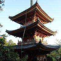 中国三十三観音霊場特別霊場西国寺、十番札所千光寺、十一番札所向上寺参拝
