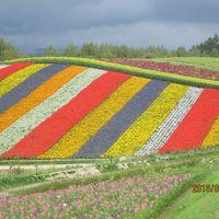 北海道のんびり旅 〜締めくくりは旭岳の紅葉を楽しむ〜