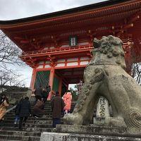 神社満喫!京都1人旅
