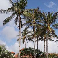 バリ島旅行 カーチャーター