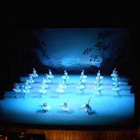 小さい秋 の サンクトペテルブルク に7泊:バレエ鑑賞