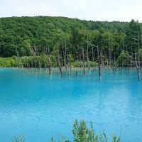 今年の北海道は暑いべや!! 2017夏 vol.5 美瑛の青い池と素敵なランチ
