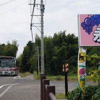 25番バス草野線で行く久留米田主丸「山苞の道」