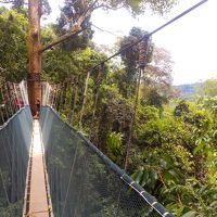 初マレーシア〜ボルネオ島コタキナバルで自然を満喫&街歩き〜(後編)おまけに千葉の温泉