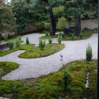 京都迎賓館各部屋ガイド付きツアーに参加(04)完 紫式部邸宅址に建つ盧山寺の参拝。