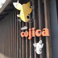 たくさん歩いた奈良の旅�〜cafe cojica〜興福寺〜東大寺(大仏殿・二月堂)♪〜