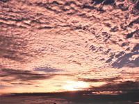 悠久の歴史〜インドシナの世界遺産・遺跡を訪ねる旅 その� 5日目:プノンバケンで夕陽を拝む