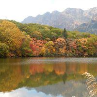 紅葉真っ盛りの「戸隠神社5社巡り」と「鏡池の絶景」を楽しむ