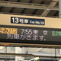 東京1日だけ