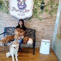 Dog cafe に行ってきました。