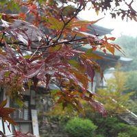 秋の福王寺〜色づく景色はもうすぐです〜