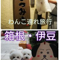 箱根・伊豆 with dogs