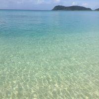 「西表島と小浜島のたぴ」2日目?西表島