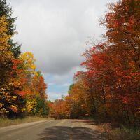 カナダ紅葉ドライブとアメリカ2都市の旅 4日目 (アルゴンキン州立公園、オタワ)