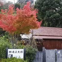 フルーツの丘の紅葉がいい感じで進んでいる(10月24日・2-2)