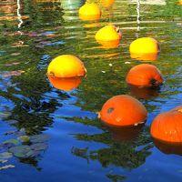 ハロウィーン@バンデューセン植物園 紅葉と不思議の国のアリス