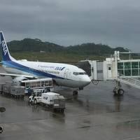 娘と孫を連れて台風後の石垣島へ。泊りはグランヴィリオガーデン【1日目】