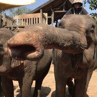 駐在のついでに 【現地速報】ラオス Luang Prabang 遠征(3) 郊外1日ツアー !