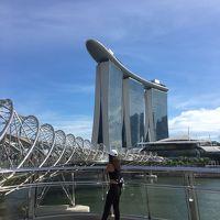 三度めのシンガポール♪『リッツ・カールトンミレニア』に泊まって念願のリバークルーズを体験をしよう★