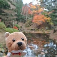 函館一人旅。観光よりもB級グルメを楽しむ冬。格安のホテルとバリウマのパンときれいな紅葉でした!