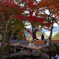 2016年 広島・山口へ紅葉と世界遺産、地元グルメを楽しむ旅 Part�