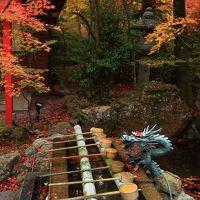 京都 紅葉めぐり〜鍬山神社、矢田天満宮