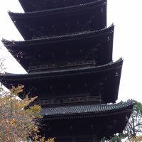 紅葉を見る京都の旅