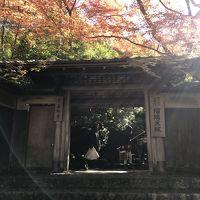 気分転換 in 京都 〜瑠璃光院の紅葉を見にいく〜