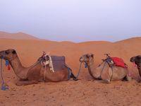 初モロッコ 一人旅チープシックな10日間 その6 マラケシユからのサハラ砂漠ツアーについてvol.2