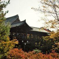 2017年11月10日 京都紅葉だより 東福寺と京都市内�