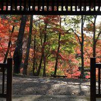 姫路城ファンタジーイルミネーションと最上山、福知渓谷、砥峰高原紅葉へ