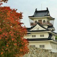 錦秋の北陸城めぐり�富山城址公園