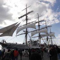 ドラゴンズ秋季キャンプと日本丸・海王丸展帆訓練