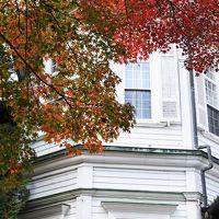 富士屋ホテルの紅葉(西洋館・11月17日)