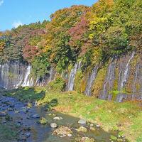 紅葉を求めて 〜田貫湖から白糸の滝・3.白糸の滝 2017.11.16〜